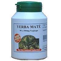 Yerba Mate Facts and Information
